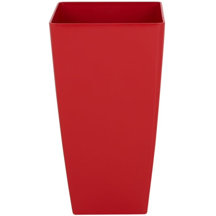 Red Plant Pot for the Office